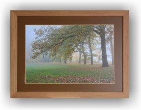Fotoobraz f 40x60 cm + rám Nielsen přírodní dub