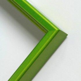 Nielsen profil 269 , kartáč smaragd